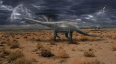 Science Times - Paleontological Discoveries: Top 5 Finds in May and June