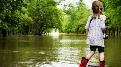 Science Times - Floods, Heavy Rains Affect Photosynthesis As Often as Droughts in Many Sites, New Study Reveals