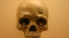 Liujiang cave skull-b. Homo Sapiens 68,000 Years Old.jpg