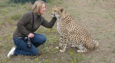 Why Humans Are Not Attacked More Often by Wild Animals? Scientists Explain Why
