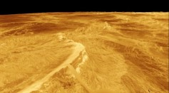 Venus' Crust is Broken into Large Blocks that Appear to be Moveable Like Sea Ice