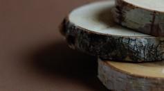 close-up-shot-of-chopped-wood-logs-5908234