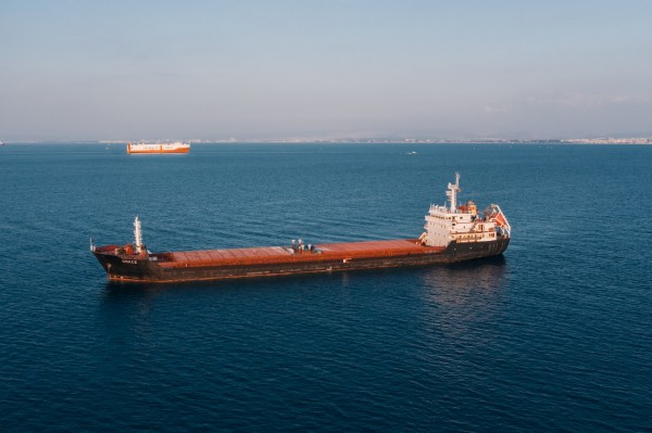 brown-and-white-cargo-ship-3277769