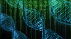 AI Used to Predict 3D Structures of Proteins Made by Human Genome; Critical for Advancing Medicine