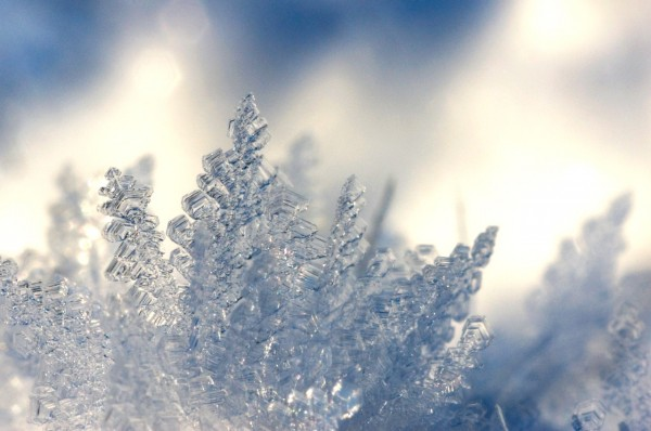 depth-of-field-photography-of-ice-shards-1130692
