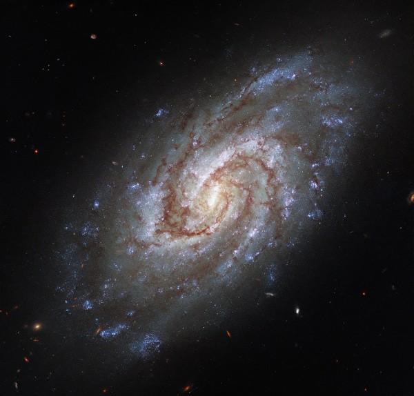 IC1954 - HST - Potw2131a