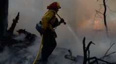 Science Times - Wildfire Containment: Here's Why It Sometimes Takes Long to Put the Flames Out