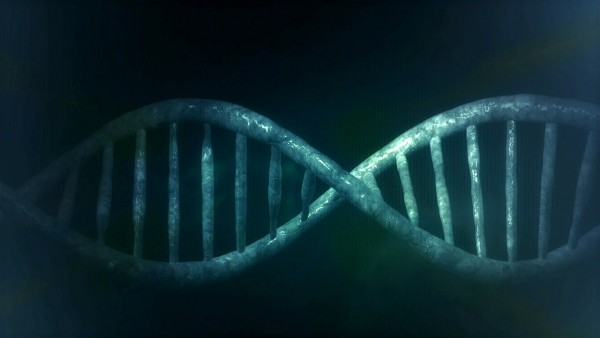 Genes Can Identify, Respond, Filter Coded Information in Signals, Leading to Significant Biotechnology Applications