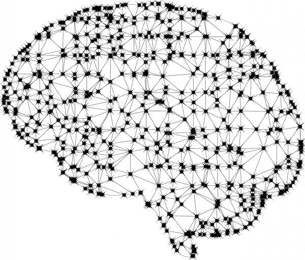 Neuroplasticity-Inspired Novel Computing Device Can Reconfigure, Store Memories Like Human Brain