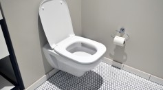 Experts Warn of Tiktok Toilet Cleaning Hack That Could Increase Risk of Chlorine Gas Exposure