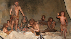 Neanderthals More Complex, Advanced Species Than Previously Thought, Study Suggests