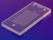 Science Times - DNA-Based Chip: Programmed to Provide Math Solutions; Scientists Hope This Technology Will Help with Global Warming, Too