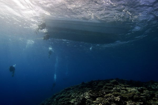 Scientific divers on the Global Reef Expedition collected valuable baseline data on the status of coral reefs around the world.