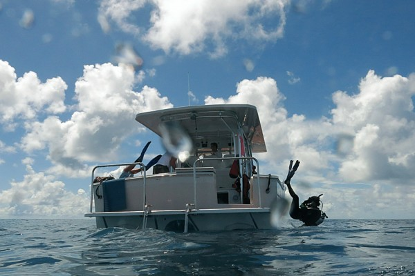 Divers Gideon Butler and Lauren Valentino back roll off the Calcutta to survey coral reefs in the Chagos Archipelago on the Global Reef Expedition.