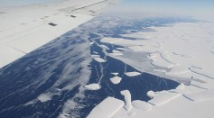 Science Times - Icy 'Glue' That's Making Antarctica Intact Begins to Break; Scientists Investigate Reason for Accelerated Melting