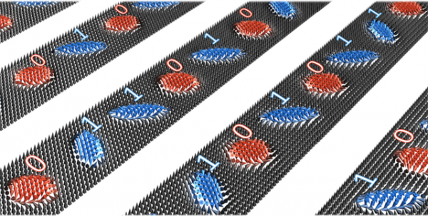 Science Times - Twisted Structures: Research Team Reveals Discovery of Braided Tiny Magnetic Vortices Known as Skyrmions