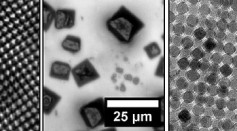 Science Times - Gold Nanocrystals: New Method Proposed, An Effective Kinetically Controlled Approach to a Family of Penta-Twinned Au NCs