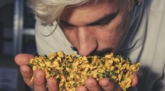 Science Times - Sense of Smell: Study Reveals How It Can Effectively Help Detect Danger Within the Vicinity