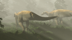 Life reconstruction of herbivorous dinosaurs based on 220-million-year-old fossil footprints from Ipswich, Queensland, Australia.