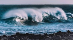 Power Generator That Mimics Seaweed Movement Developed for Harvesting Static Energy from Ocean Waves