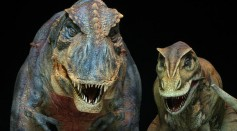 T-Rex as the most feared predator of all dinosaurs in the movie Jurassic Park
