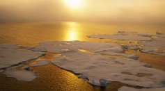 Melting ice sheets on the sea surface