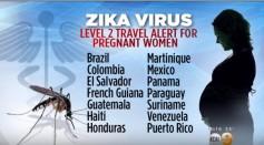 CDC Releases Travel Advisory Against Zika Virus