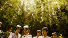 Thai Airforce cadets look at mobile phone images under a tree decorated for the Thai King Bhumibol Adulyadej's 86th birthday after a celebration on December 5, 2013 in Bangkok, Thailand.