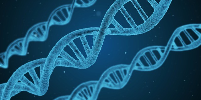 DNA and Rare Genetic Diseases