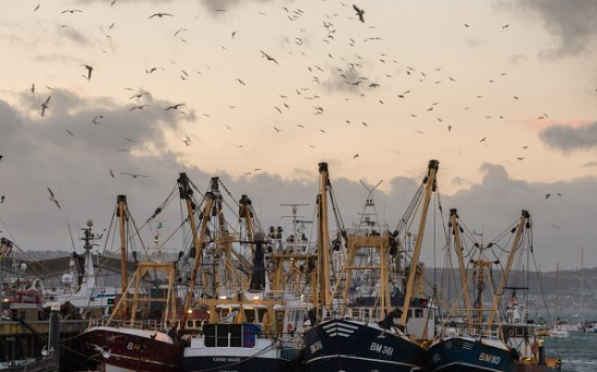 The British Fishing Industry And The European Union