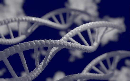 Scientists Warn Human Genome Editing Is Not Yet Safe to Try On Humans As It Might Introduce Unwanted Genetic Defects