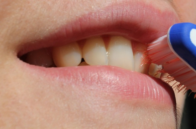 Science Times - Link Between Brushing Teeth and Dementia: Researchers Say It's Oral Bacteria