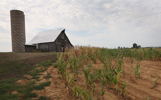 Midwest Farmers Continue To Struggle Against Extended Drought