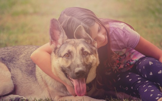 Science Times- Canine Coronavirus: Latest Infection Detected in Child Comes from Dogs