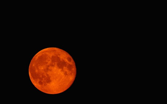 Science Times - Blood Supermoon: The Best Time, Sites to See This Rare Event