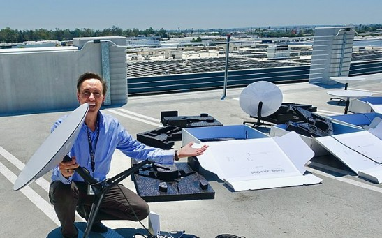 Science Times - Pesky Pigeons Roosting on a Dish; Are They Causing the Outages, Problems in Beta-Testing of Elon Musk's Starlink Satellite Internet Service?