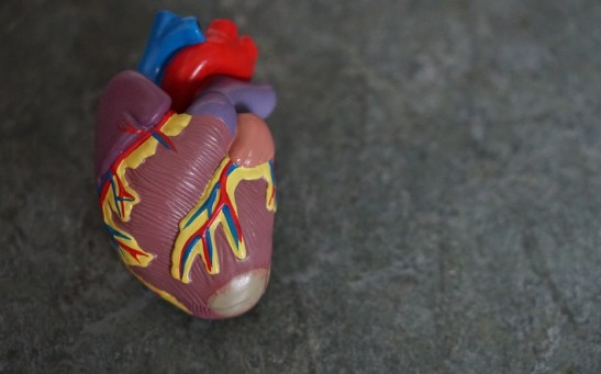 World Heart Day 2021: Here Are Some Practices to Have a Healthy Cardiovascular Health