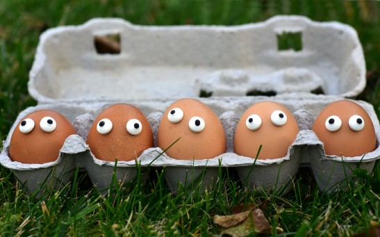 Science Times - Chemistry Compared with an Egg Carton; Researchers Show How Water Surfaces May Help Produce Helpful Materials Like Mobile Phones